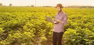 Фермеры в Севастополе получат государственную поддержку